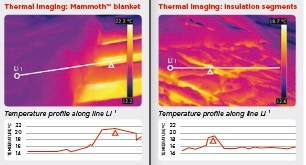 Thermal-images.jpg#asset:570